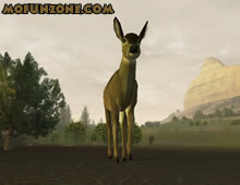 Download Deer Hunter 2005