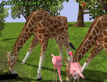 Download Wildlife Park 2